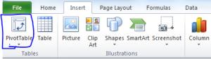 Excel PivotTable icon